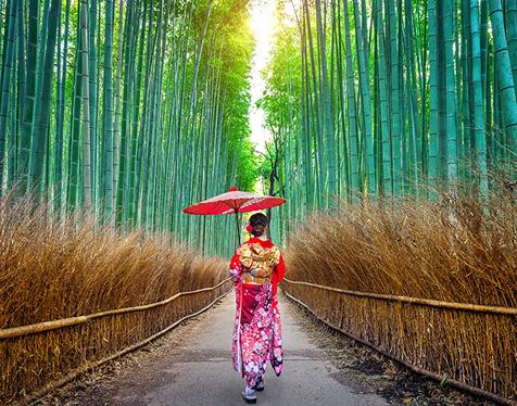 JAPAN - COMING SOON